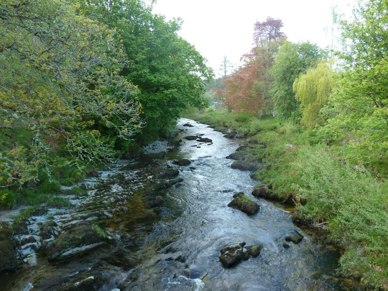 The Wye from the Bridge in Rhayader park