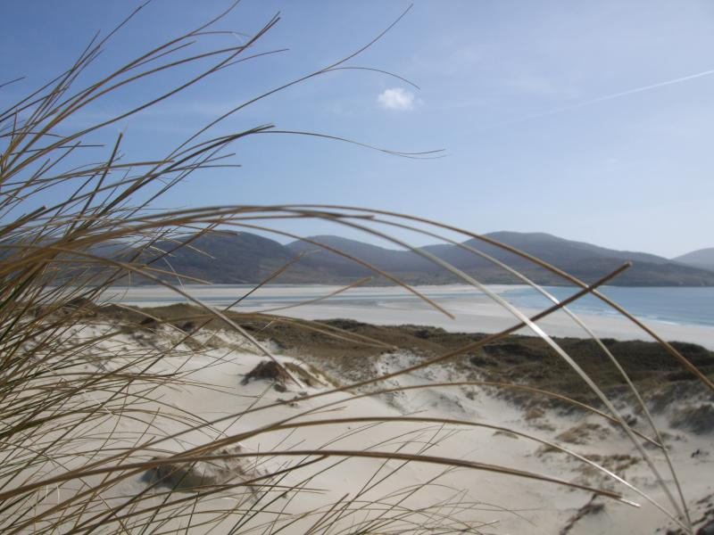 On the beach, Luskentyre