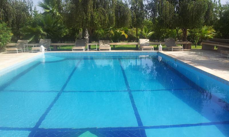 Beautiful full-size lap pool