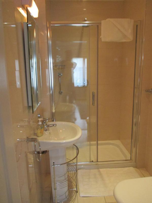 Large en-suite power shower