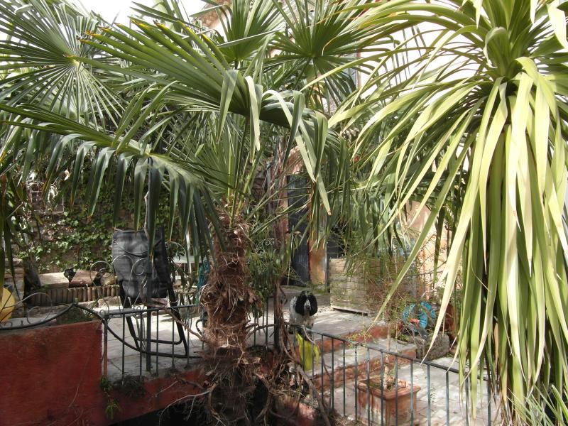 Terrasse en Riad