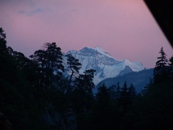 Pink Jungfrau