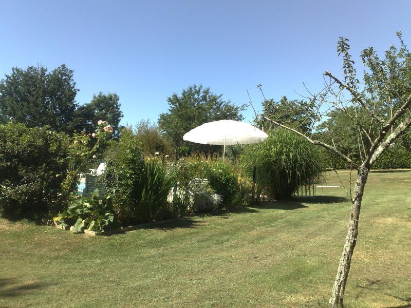 Garden around pool area