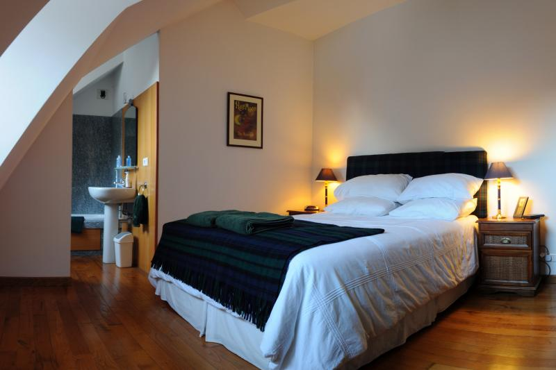 Penthouse de L'Androsace, vacation rental in Chamonix