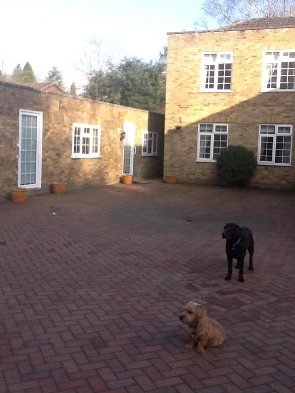 Harvey and Bertie welcome you to Bunkers Hill House