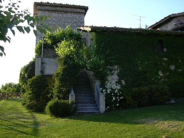 External with garden