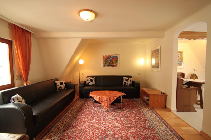 Grosszügiges Wohnzimmer mit 32' Full-HD TV, HD-SAT und Blu-Ray-Player
