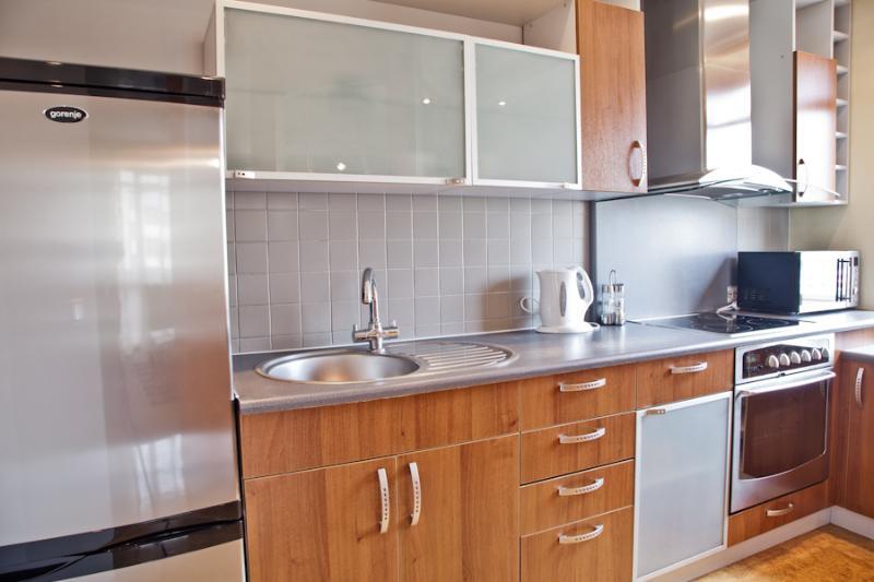 Modern apartment in Zaliakalni, alquiler vacacional en Condado de Kaunas