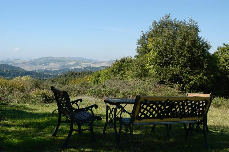 view up to Volterra from the place under the old olive tree