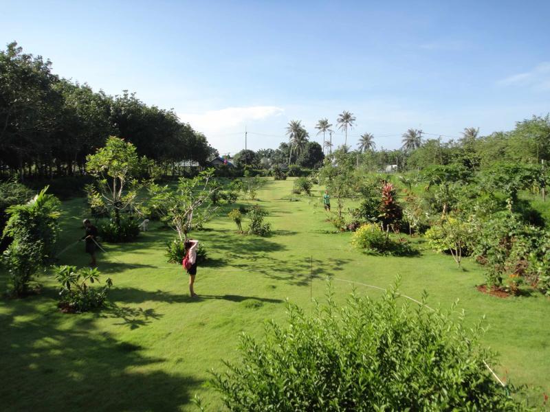 Più di 3.700 mq di prati e giardini
