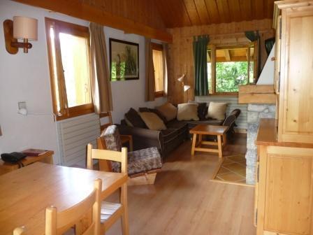 Salon salle à manger avec cheminée