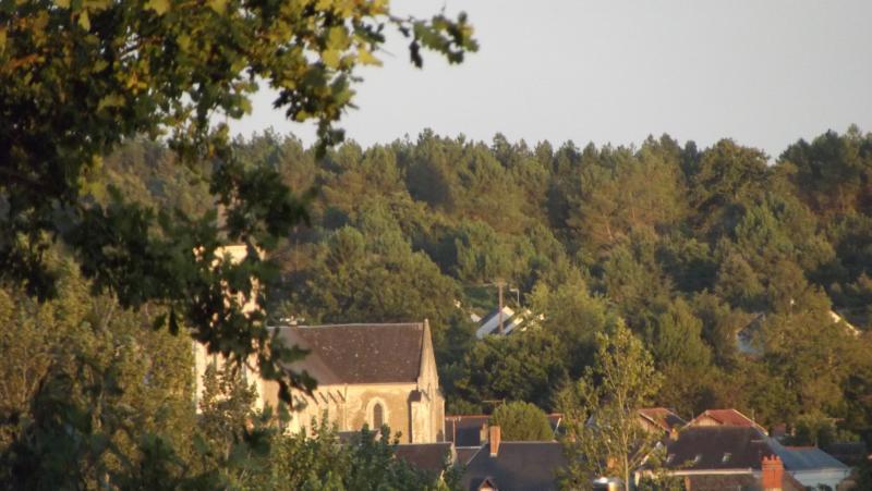 View from La poulerie across to the village of Parçay les Pins.