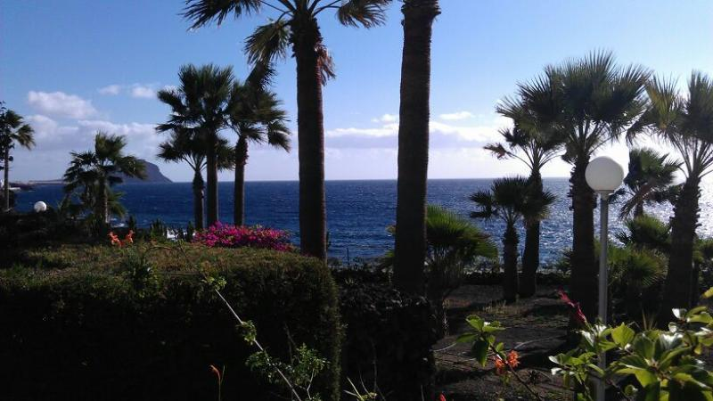 amazing uninterupted atlantic ocean views , from the front garden and house !!