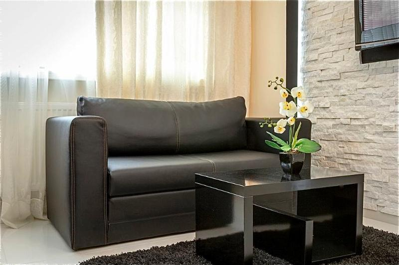 Sofa bed for extra guests (150cm X 200cm)