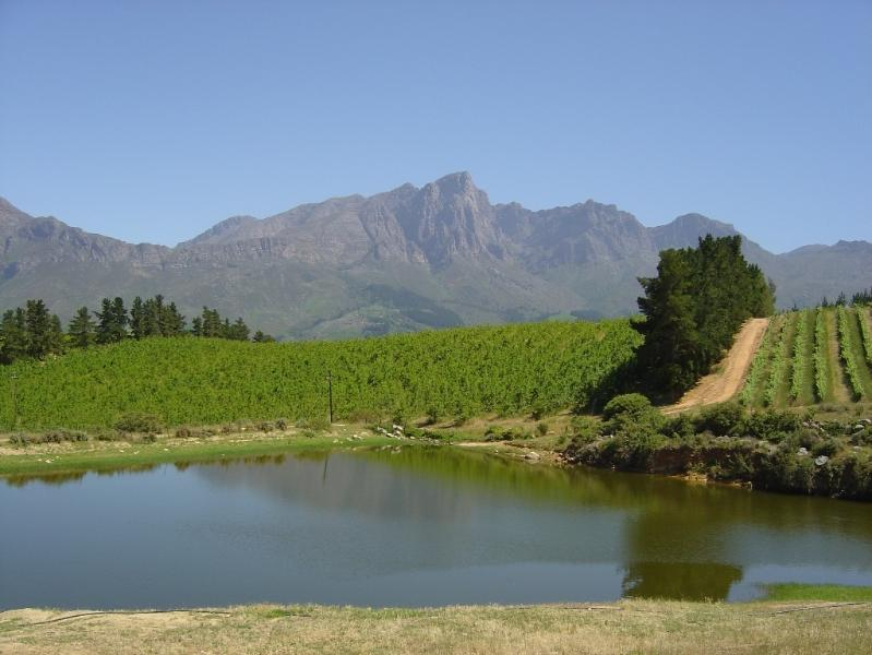 Tulbagh valley