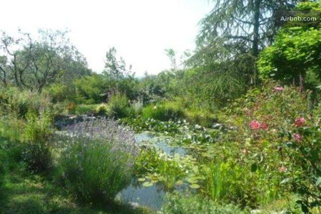 large pond, where you can sit, read, do excercises like yoga etc.
