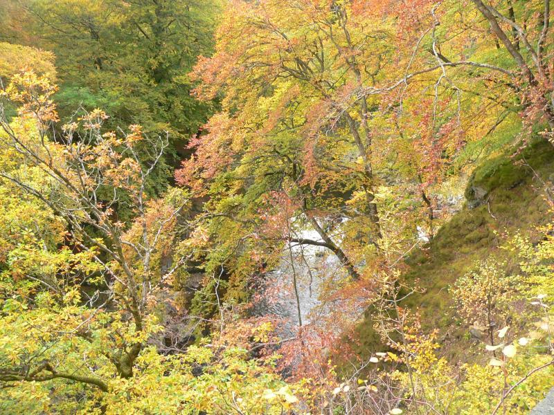 Autumn in Glen Lyon
