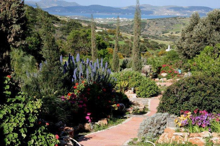 Gardens outside the Olive's House with Antiparos in the distance