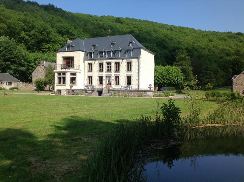 Chateau domaine le Risdoux, vacation rental in Bourseigne-Vieille