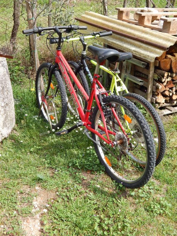 Bicycles you can use during your stay