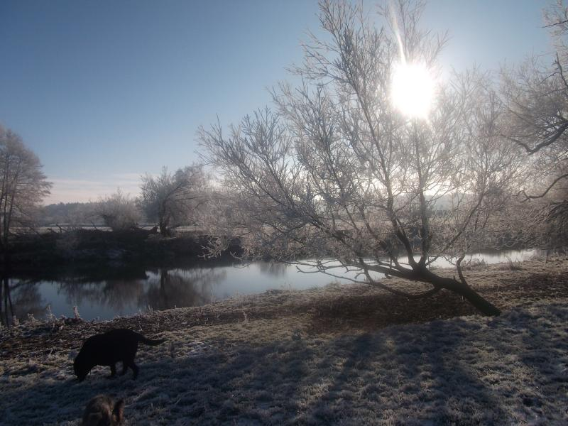 A frosty morning at the River Usk