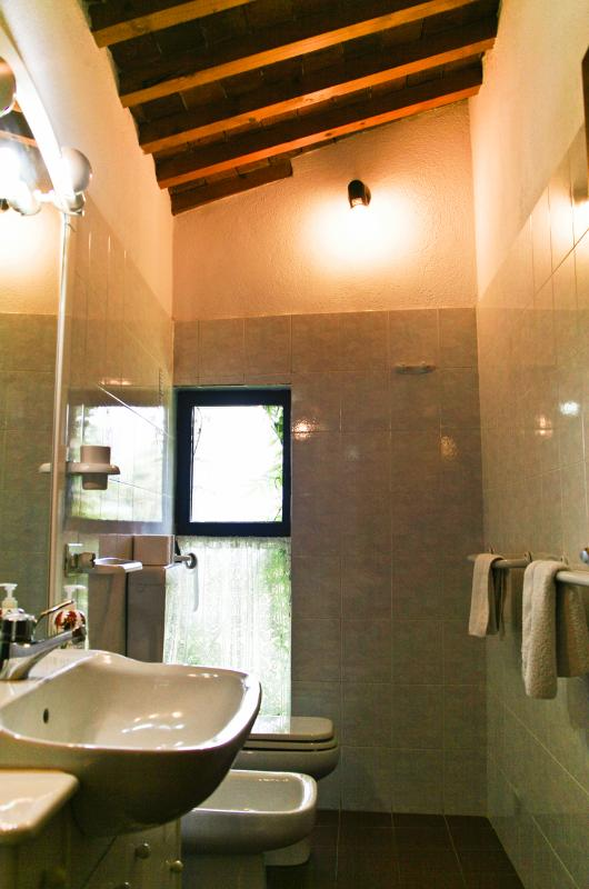 The bathroom, the shower is en-suite in the twin room.