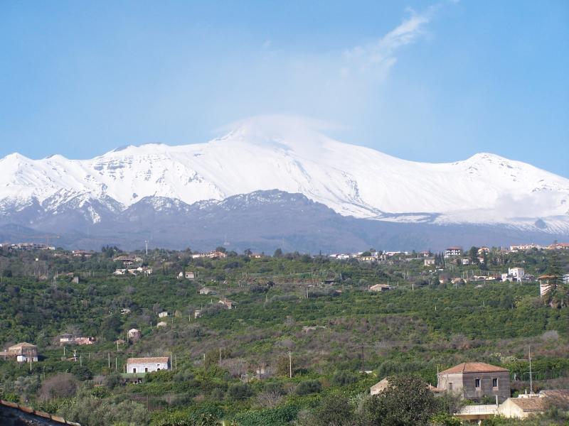 Etna covered by snow and lemon garden viewed from Santa Tecla