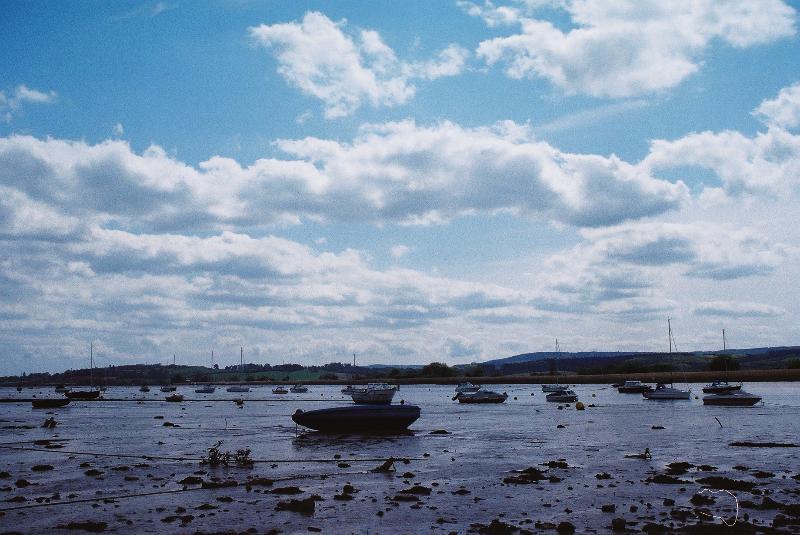 Exe estuary