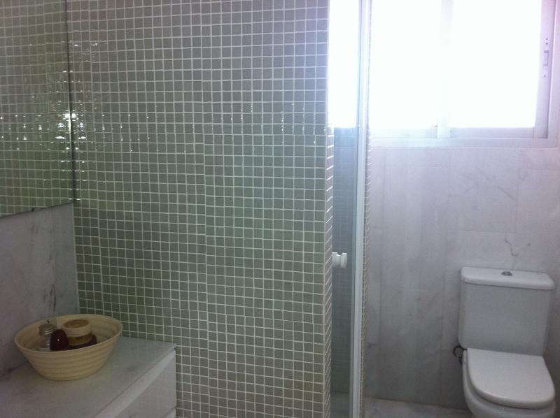 Newly fitted designer bathroom.
