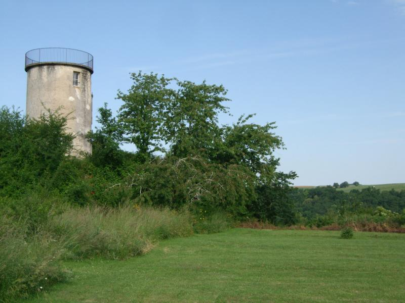 Garden view of tower/windmill