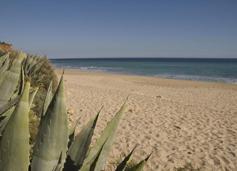 5 minute walk to Porto de Mos beach
