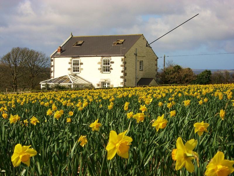 A antiga capela e Cottage