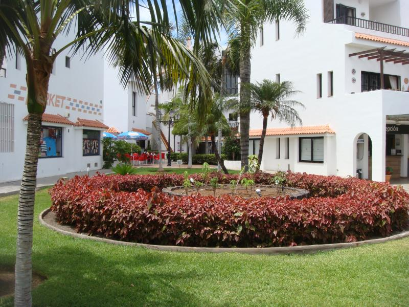 Cristian Sur, holiday rental in Los Cristianos