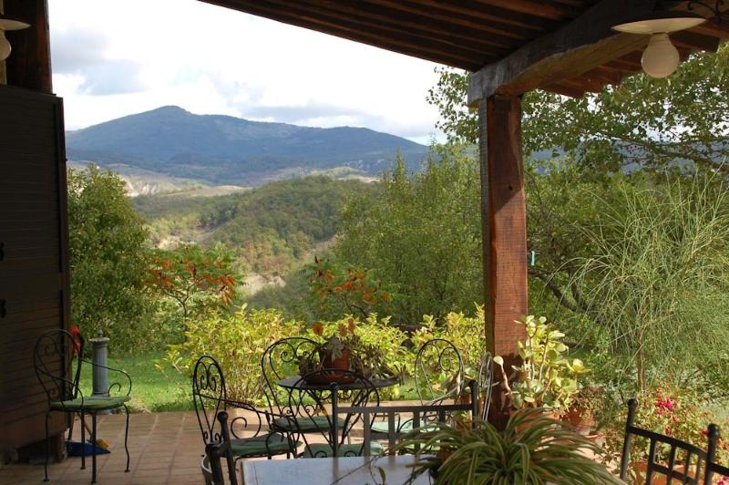 Old Brick Farm (v034), holiday rental in Radicofani