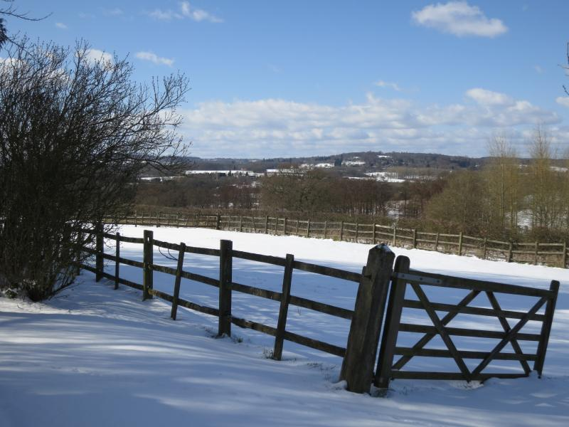 Winter views from Willow Cottage