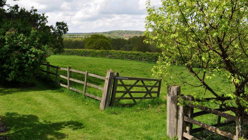 Springtime views from Willow cottage