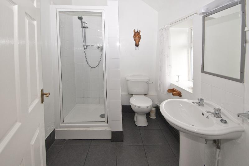 THIS IS A PHOTO OF THE SHOWER ROOM PLUS TOILET AND WASH HAND BASIN.