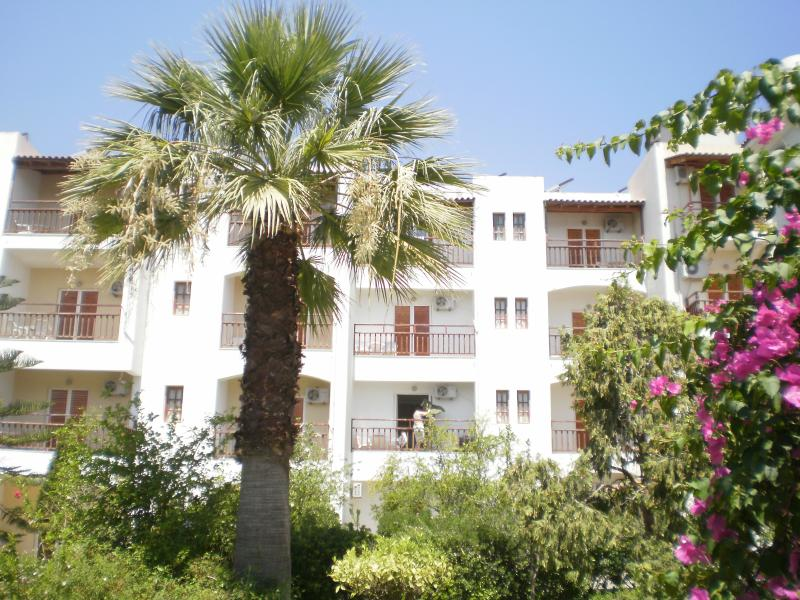 A view from the inside gardens, showing our garden apartments.