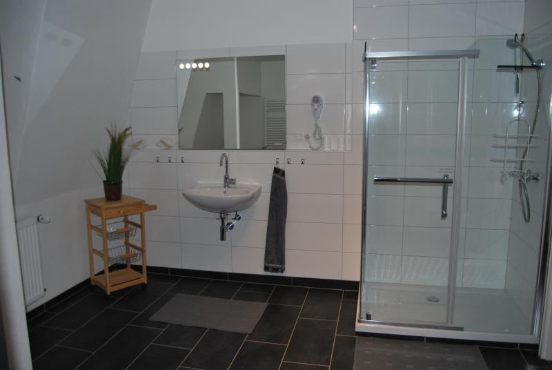 A large bathroom with shower.