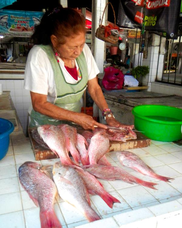 Fresh red snapper at the mercado