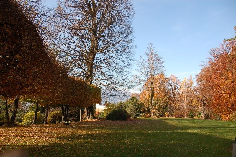 VillaAllegra - el jardín de invierno