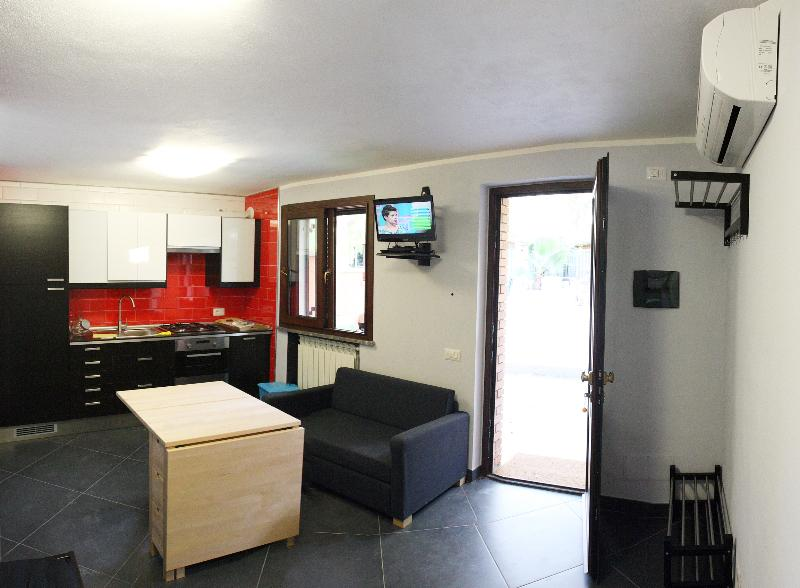 Entrance - open kitchen - Tv and sofa bed.