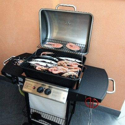 Enjoy your food on the gas barbecue