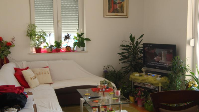 Martina apartment in Dubrovnik, holiday rental in Mokosica