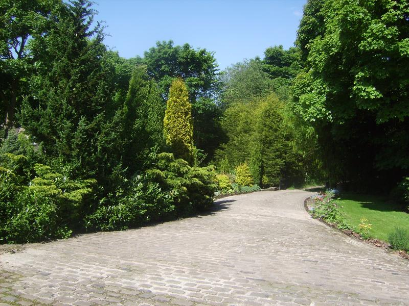 The Driveway from the Cottage
