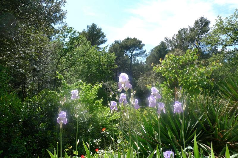 Studio Surrounded by Nature, holiday rental in Le Tholonet