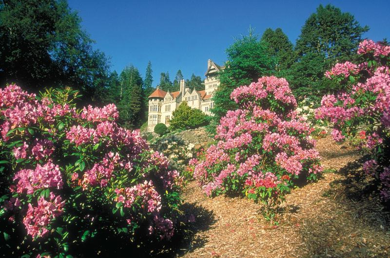 Cragside country house a lovely place to visit