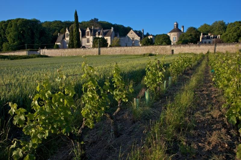 Another view of Chateau de La Vauguyon