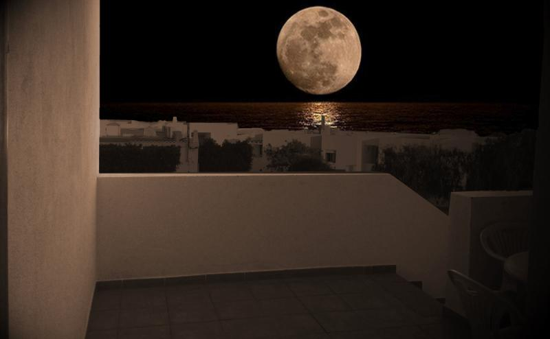 view of the full moon from the terrace