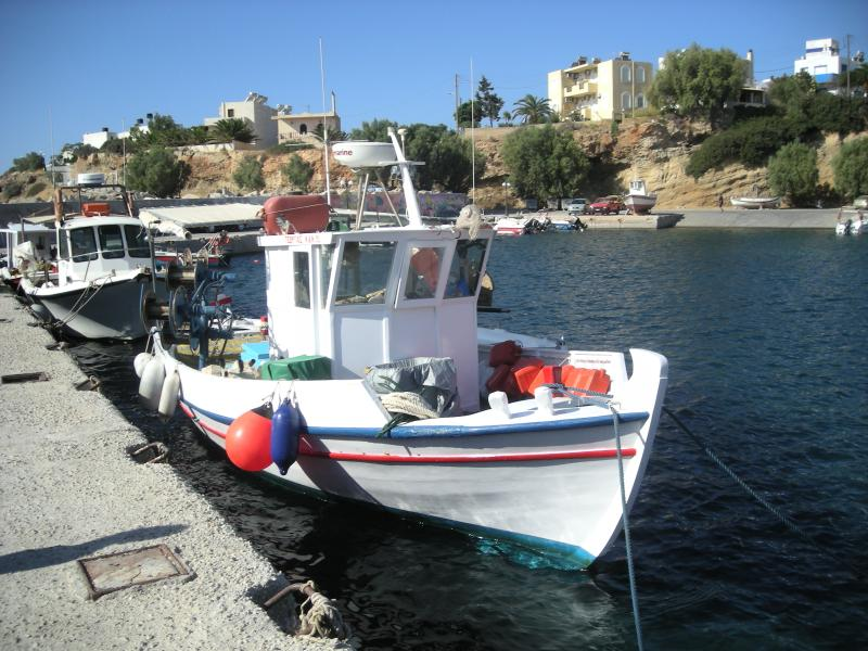 Fishing trips from village harbour; tavernas will cook your catch of the day